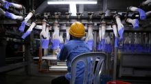 Malaysia's Top Glove waits for U.S. Customs to verify remedial labour action