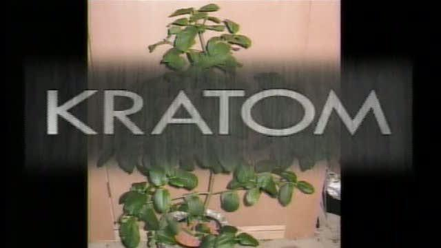 Substance called 'Kratom' becoming a growing problem