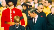 'Is it true that Mummy's dead?' Prince Harry's question to Charles after hearing about Diana