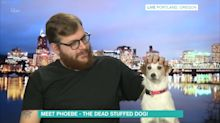 A man and his dead stuffed dog make for a bizarre interview