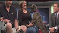 """ABC Action News: Weekend Edition: Rescues in Action """"Java"""""""