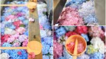 日本神舍Twitter再熱傳 洗手池佈滿紫陽花超靚