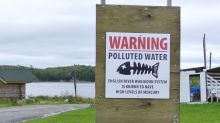 Grassy Narrows mercury victims up to 6 times more likely to have debilitating health problems, report says