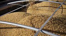 川普:他願意再次與習近平會面 讚揚中國購買大豆