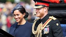Harry and Meghan may not be able to use Sussex Royal brand
