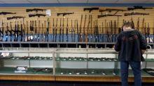 Pew U.S. survey finds agreement on some gun-control proposals