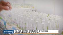 Bayer to Raise $30 Billion in Share, Bond Sales for Monsanto