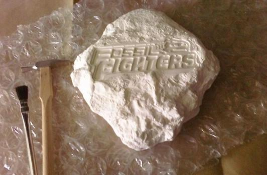 Nintendo sends us odd Fossil Fighters package
