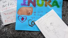 Fans of Inuka from Singapore and overseas lament beloved polar bear's passing