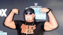 Hulk Hogan reveals private jet terror as brakes melt in 'hard landing'