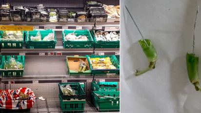 Morrisons issues green bean recall after two customers find NEEDLES in their veg