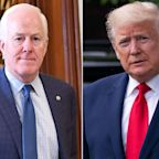 Republican Senator from Texas Compares His Relationship with Trump to a Bad Marriage: 'He Is Who He Is'