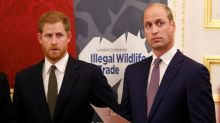 "Prince Harry reportedly accused William of trying to ""wreck his relationship"" with Meghan"