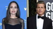 Brad Pitt & Angelina Jolie's Judge Disqualified from Case, Pitt Says 'Facts Haven't Changed'