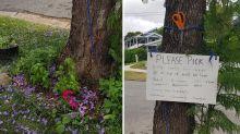 'Please pick': Homeowner's generous gesture to neighbours