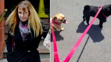 Dog-sitter at centre of missing pets row banned from keeping them for five years