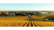 Agenda du vin – Week-end chez les vignerons de Fronsac