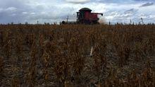 Brazil court overturns ban on weed-killer glyphosate
