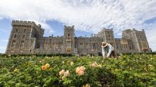Private royal garden where Queen grew veg in WWII opens to public for first time in 40 years
