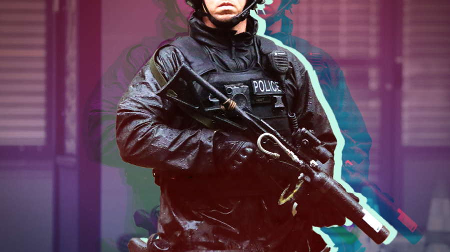 How can police violence be prevented?