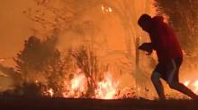 El video del joven que arriesga su vida para salvar a un conejo del fuego voraz en California derrite corazones