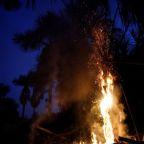 Facing global pressure, Brazil's Bolsonaro may send army to curb Amazon fires