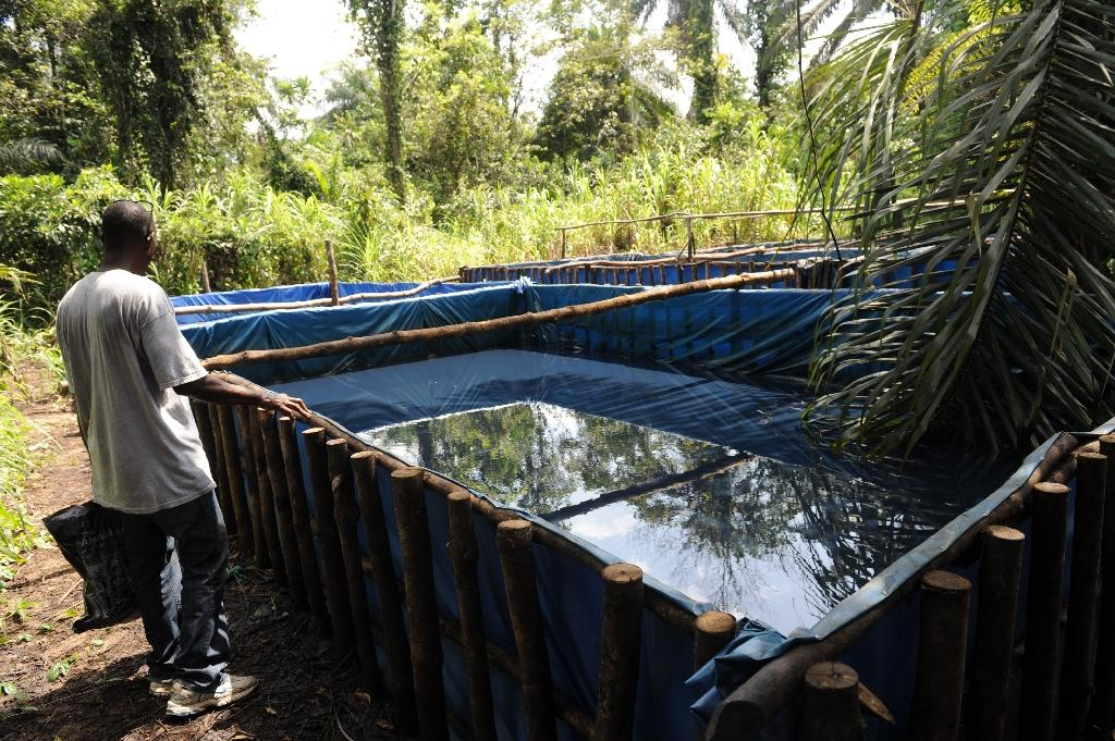 A man stands beside storage constructed for crude oil thieves in Bayelsa State on the Niger Delta on April 11, 2013 (AFP Photo/Pius Utomi Ekpei)