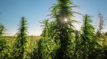 My Opinion Has Changed on These 3 Marijuana Stocks