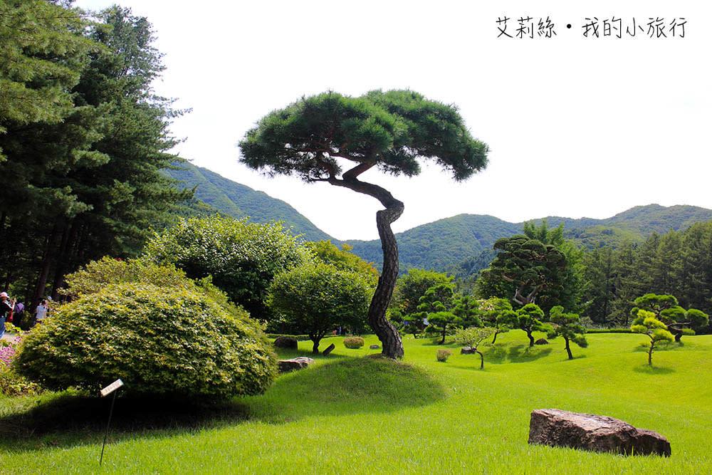 IMG_0093-s.jpg