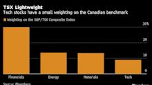 Meet the Other Tech Companies Propping Up Canada's Stock Market