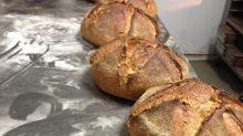 Los panaderos artesanos de España, contra el pan engañoso