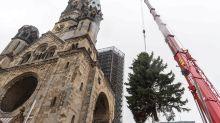 Advent: Die Ankunft eines Baums auf dem Breitscheidplatz