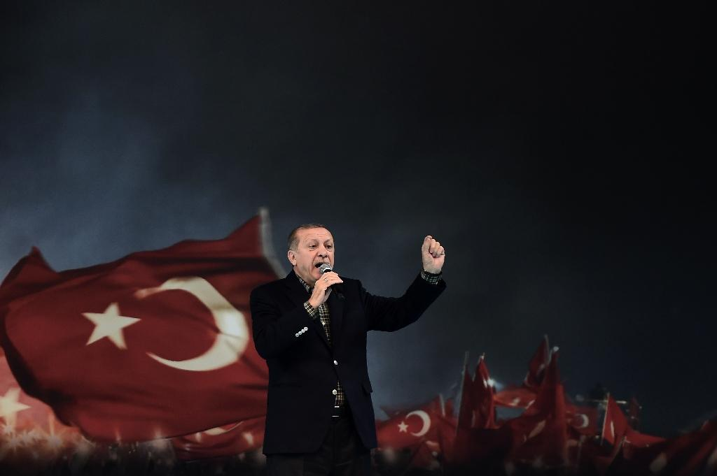 """Go forth and multiply, the Turkish president told the diaspora: """"You are Europe's future"""" (AFP Photo/OZAN KOSE)"""