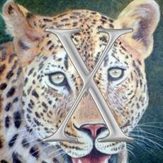 Apple's Leopard delayed to October, iPhone blamed