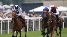 Horse Racing: Pretty Pollyanna seeks Fillies' Mile redemption
