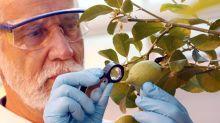 BASF macht Milliardendeal mit Bayer