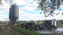 30,000 chicks die in barn fire in Kings County