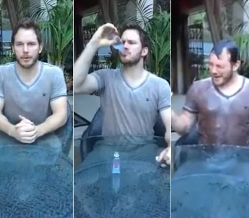 How the Ice Bucket Challenge Actually Helped Scientists Working on ALS