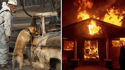 US fire death toll rises to 71 with 1000 missing