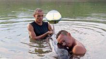 Un surfista salva de la muerte a una orca bebé