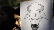 Linchan a musulmán acusado de traficar vacas en la India