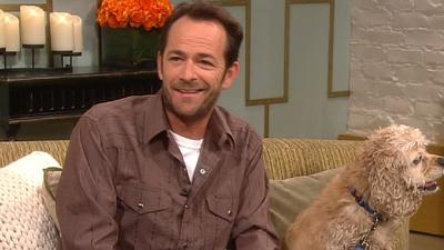 Luke Perry Urges All Animal Lovers To AdoptLuke Perry Urges All Animal Lovers To Adopt