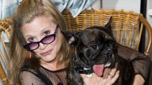 Carrie Fisher's Dog Watching 'Mom' In New 'Star Wars' Trailer Will Destroy You