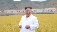 North Korea's Kim says he 'sincerely hopes' Trump recovers soon - KCNA