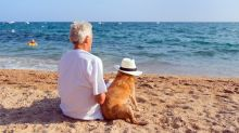 One Key Strategy to Build Your Ultimate Retirement Portfolio