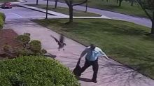 Watch moment aggressive goose attacked Indiana police officer outside station
