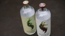 Diageo buys majority stake in non-alcoholic spirit maker Seedlip