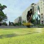 "D.C. paints street with ""Black Lives Matter"""