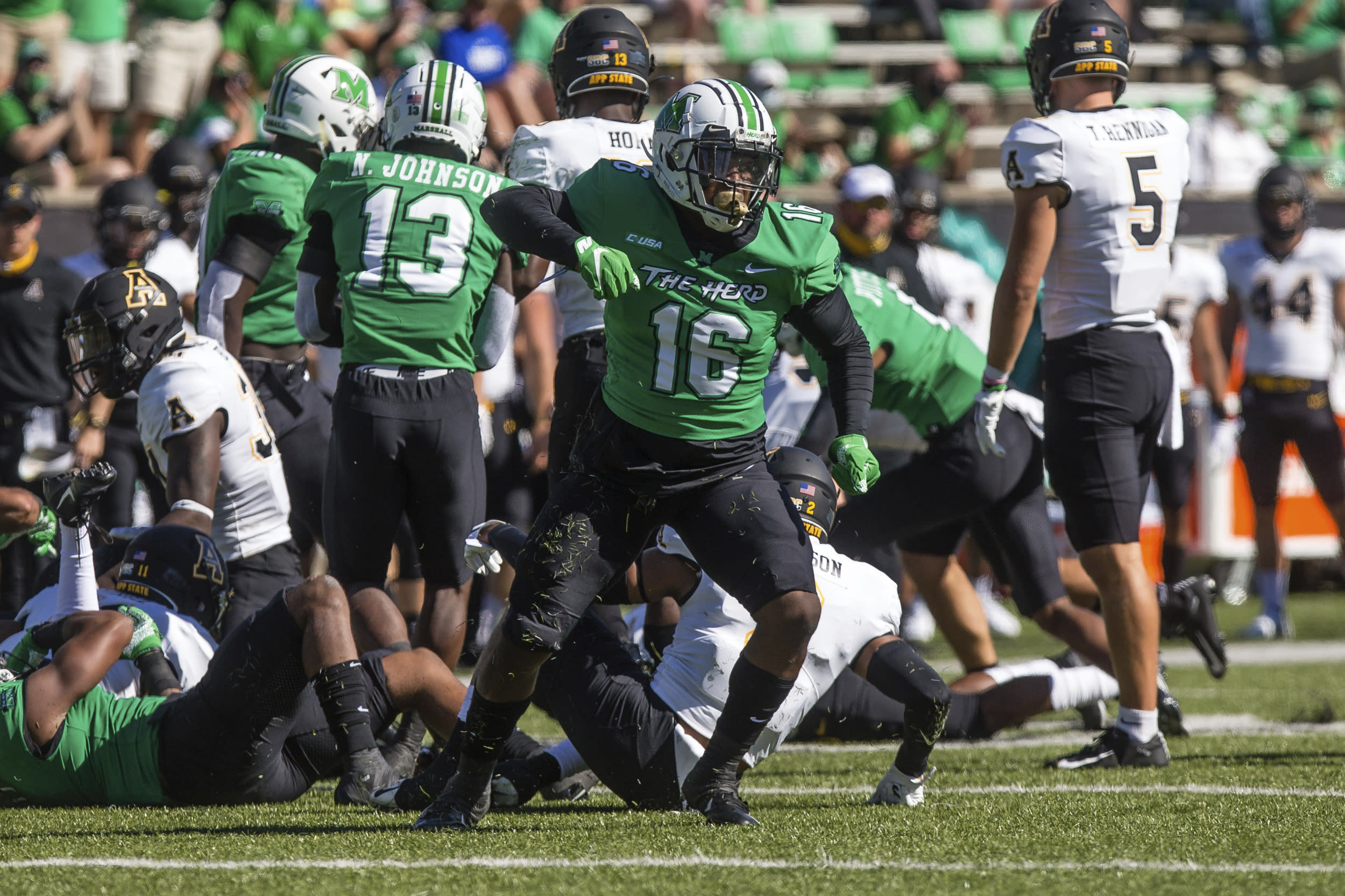 Marshall linebacker Brian Cavicante (16) celebrates after a stop against Appalachian State during an NCAA college football game Saturday, Sept. 19, 2020, in Huntington, W.Va. (Sholten Singer/The Herald-Dispatch via AP)