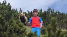 12-year-old keeps calm during close encounter with bear in Italian mountains